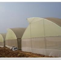 Readymade Tunnel And Poly House Kit