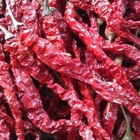 Dry Red Chilly from NTC Export