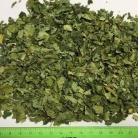 Organic Dry Moringa Leaves
