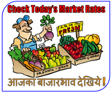 Check Todays Commodity Market Rate