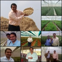 Horticulture / Floriculture Project Consultancy