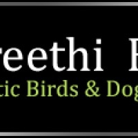 Preethi Farms, Exotic Birds and Dogs Breeders