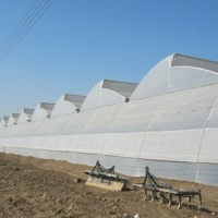 Required New Green House on Lease for Hydroponic Farming