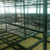 Low cost Hydroponic in Maharashtra