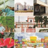 Sheel Biotech Limited - Tissue Culture and Plant Propagation, Greenhouse, Organic Adoption and Certification