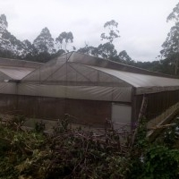 Poly house for sale at Kodaikanal