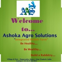 Rabbit Farming, Ashoka Agro Solutions